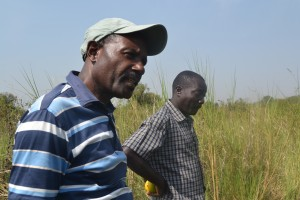 James Lubega (left) and Omasia Nekion in the farm