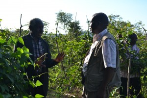 Bishop Kitula Explaining a point to Rev. Nicta Lubaale on passion fruit farming