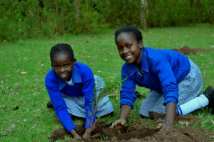 School girls participate in tree planting in Lari.