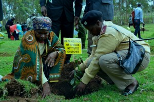 Chief of LARI location Alice Ngugi and Ms Mary Njeri Mbugua an AIC member planting the OAIC tree.