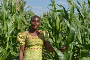 Evaline Atieno at Rorya next to an affected maize crop.